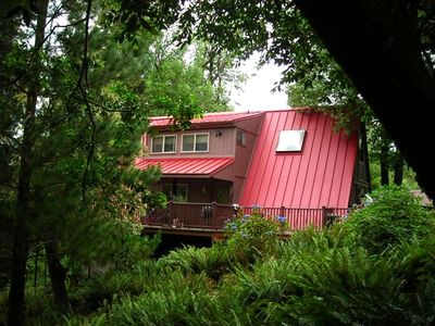 River House in the Woods. Total serenity. Picture taken from fern garden.