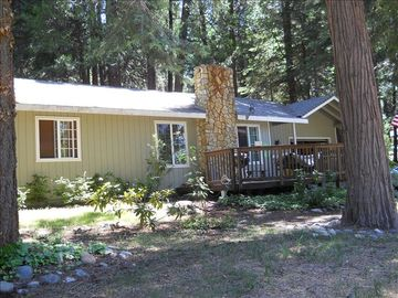 Pollock Pines house rental - Welcome to A Mountain Rose, our little house in the woods!
