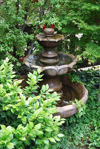 Fountain in Front Yard!