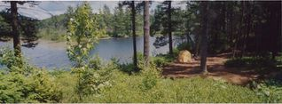 Lake Winnisquam cottage photo - Looking down over huckleberry bushes towards badminton area and sweatlodge beach