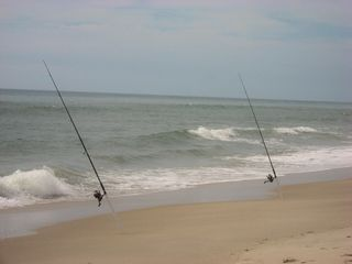 Indian Harbour Beach condo photo - Surf fishing is one of the pleasures awaiting you
