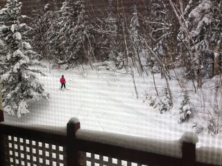Mount Snow condo photo - Taken from deck, this is Peters Trail right behind the Unit