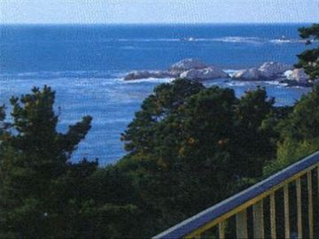 Carmel Highlands apartment rental - View from the patio!