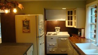 Tannersville cabin photo - Retro kitchen