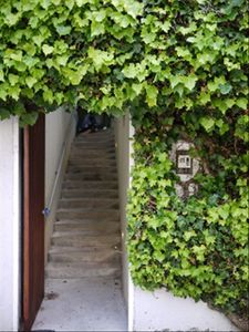 San Francisco cottage rental - Entrance to property