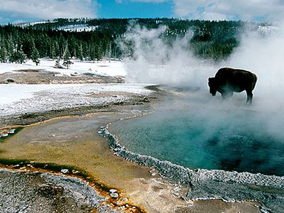 One of Many Yellowstone Geysers Surrounding Old Faithful