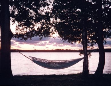 Lake Ann house rental - Hammock at waters edge