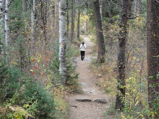 Steamboat Springs condo photo - Fall Hiking