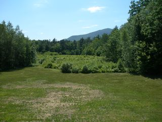 North Conway condo photo - spring /summer view from deck looking towards adjourning national forest.