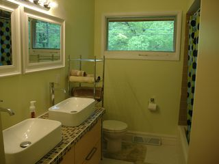Fennville house photo - Newly remodeled, modern main floor bath