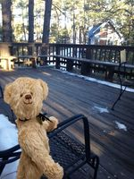 Enjoying the spacious deck from this wonderful mountain getaway!