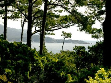 Pebble Beach house rental - Views of Carmel Bay and Point Lobos from Pebble Beach