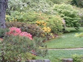 Acadia National Park cottage photo - Asticou - Azalea Gardens in May - 3.5 miles away
