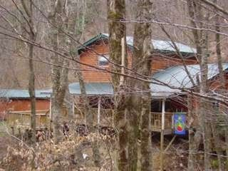 Maggie Valley cabin photo - Totally private and secluded on a 350 foot creek, so peaceful!