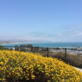 Dana Point house rental - Many breathtaking views await you a short walk from our Dana Point home!