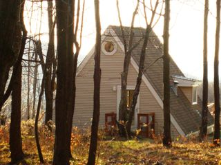 Stamford cottage photo - Late fall foliage view;cottage fr. the 'embracing' east woods;6 acres await you!