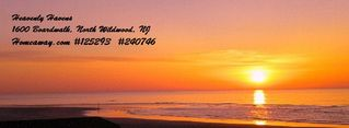 North Wildwood condo photo - Serenity awaits! Sunrise view from the haven of the master bedroom!