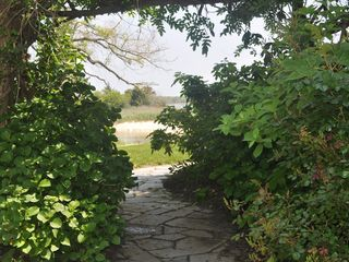 East Quogue house photo - Path from front gate to back garden and bay.