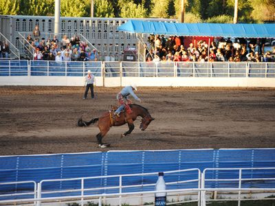 Experience the Summer Rodeo Series downtown Steamboat