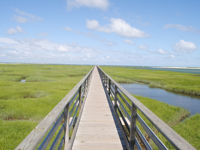 Comfortable Cape Cod Summer Rental