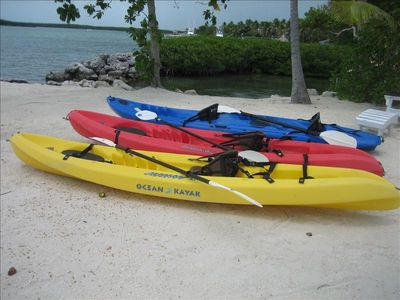 Single or double kayaks may cruising the bay fun