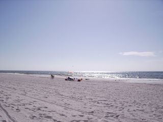 Indian Rocks Beach condo photo - Your Beach CROWDS, CROWDS CROWDS