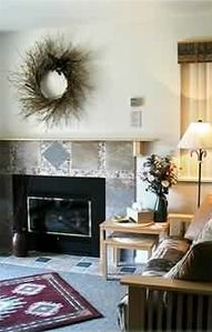 Red Pine Condo: New gas fireplace will keep you comfy-cozy in winter