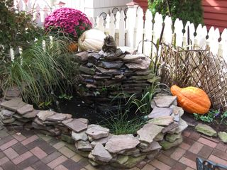 Cape May house photo - Fall Side Garden and Koi Pond
