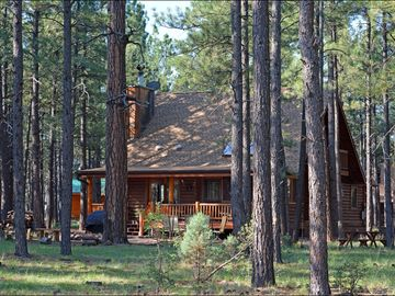 Pinetop cabin rental - Cabin Deck and Patio from Forest