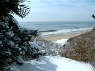 Montauk house photo - Montauk 365! Clear your head anytime as we rent weekends mid-Sept thru mid-June