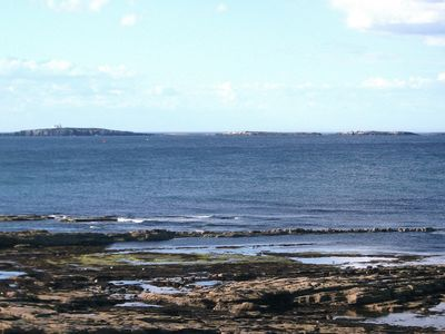 The nearby Farne Islands