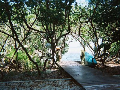 Walkway through buttonwood trees to your own Beach
