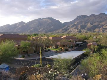 Welcome to your Tucson vacation paradise where warmth and beauty await you!