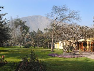 Lima house photo - View of the garden, house and mountain