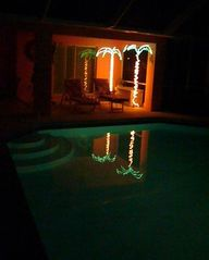 Cape Coral house photo - two lighted palm trees for evening atmosphere