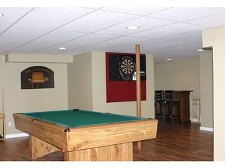 Buchanan house photo - Full finished entertainment basement w/ pool, poker tables, TV, craps, darts