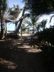 Isabela apartment photo - path to beach