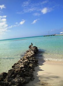 Rum Point Beach Club - rock jetty and beautiful water
