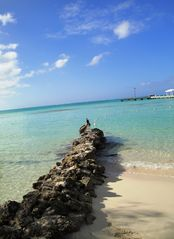 Grand Cayman condo photo - Rum Point Beach Club - rock jetty and beautiful water