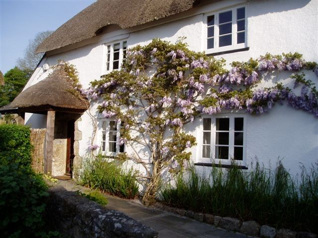 5-star stunning thatched cottage in beautiful Dartmoor village