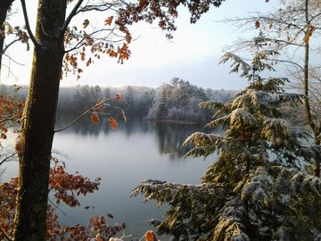 Late Fall/Early Winter. View from Buckles Cabin #1.