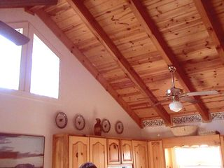 Blue Ridge cabin photo - Cathedral ceilings and skylight