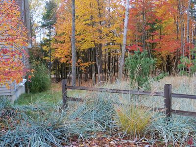 Landscaped with grasses and beautiful Michigan fall colors