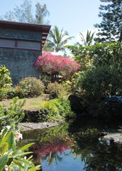 Kapoho house photo - Garden Pond