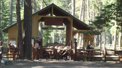 Rent horses at nearby Lake Wenatchee State Park