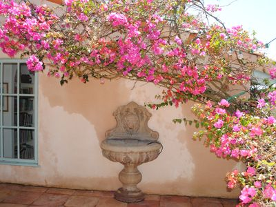 Bougainvillea framing patio fountain outside Dining Room.