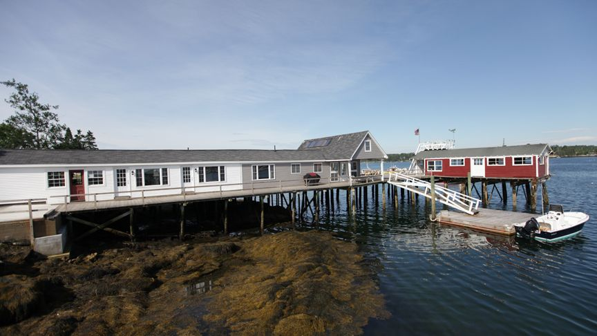 Boothbay Harbor house rental - Front view at low tide