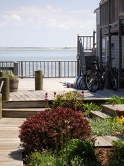 Provincetown condo photo - The walkway to the unit with a large common deck overlooking the harbor