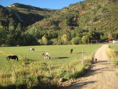 Welcome to HappyOurs Ranch, a little bit of heaven and 50 acres of paradise
