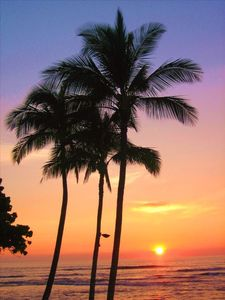 Sunset on the Kohala Coast